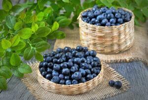 8 Manfaat Mengejutkan dari Bilberry